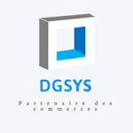logo dgsys